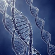 A doença de Huntington é causada por um gene defeituoso no cromossomo quatro
