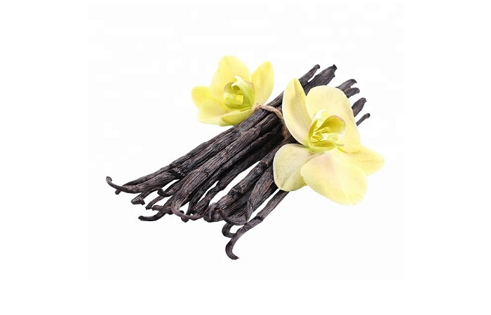 Os frutos pouco atraentes de Vanilla escondem um sabor inigualável