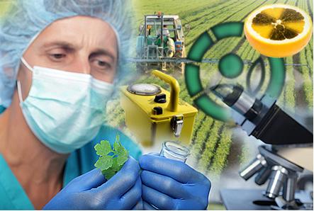 A radioatividade possui diversas aplicações benéficas à agricultura