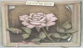 Mensagem subliminar: As pétalas da rosa mostram um casal nu.