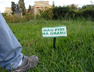 Somente duas construções são consideradas corretas: pisar a grama e pisar na grama