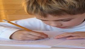 Anotar tudo o que desperta a curiosidade auxilia nas criações.