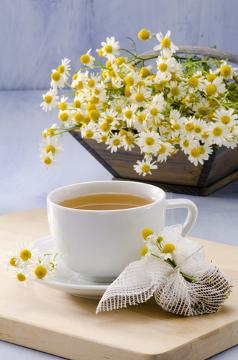 A camomila é bastante utilizada na medicina popular