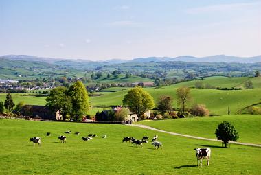 Exemplo de práticas agrárias no meio rural