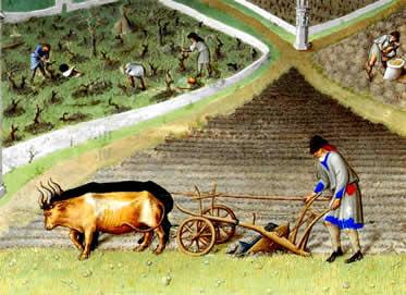 As terras de um feudo eram costumeiramente divididas em diferentes mansos.