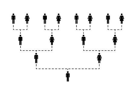 Analisando o histórico familiar de um indivíduo, podemos entender melhor suas características