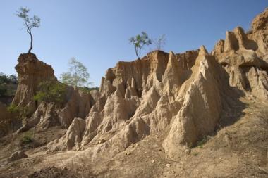 Os processos erosivos podem causar sérios danos aos solos