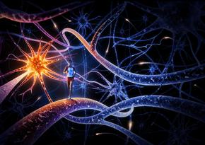 Os neurônios