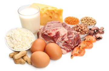 Os alimentos acima apresentam grande quantidade de proteínas