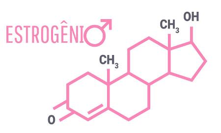 Estrogênio é um termo utilizado para se referir a um grupo de hormônios