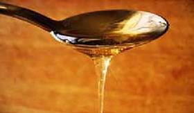 O mel é rico em lactose e glicose, auxiliando na alimentação e armazenamento de fontes de energia