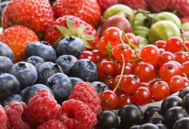 I love all kind of fruits! / Eu amo todos os tipos de frutas!