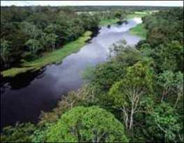 Consciência ecológica para preservação de ambientes como esse