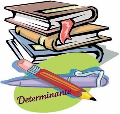 O determinante é representado por alguns termos que compõem o adjunto adnominal