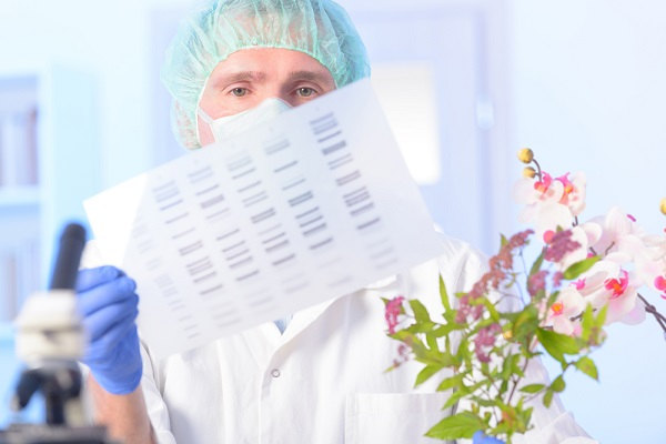 O biólogo pode atuar em três grandes áreas:  meio ambiente e biodiversidade, biotecnologia e produção, e saúde.