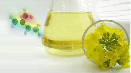 Os óleos de essências para perfumes extraídos de flores, frutas e vegetais contêm muitos terpenos