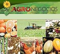 A importância da atividade agropecuária para a economia e a sociedade.