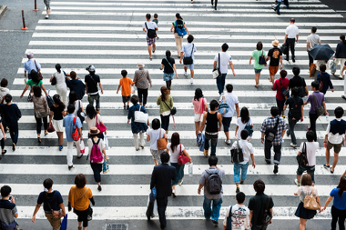 As variações demográficas passaram a ser mais bem compreendidas com a teoria da transição demográfica