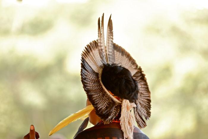 A garantia e proteção dos direitos dos índios é assegurada, no Brasil, pela Funai, órgão indigenista oficial.