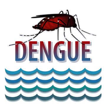 Conhecido como  mosquito-da-dengue, o Aedes aegypti também é responsável por transmitir outras doenças