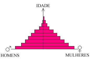 Exemplo de Pirâmide Etária ¹