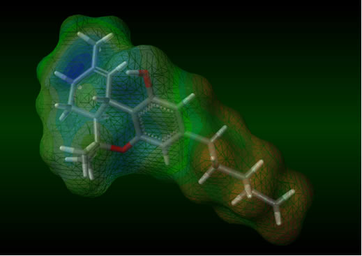 O THC é conhecido comumente por tetra-hidrocarbinol; porém seu nome oficial é 6,6,9-trimetil-3-pentilo-6H-dibenzo[b,d]piran-1-ol