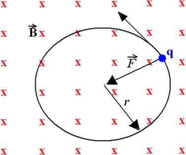 A partícula carregada com velocidade v tem movimento circular uniforme quando está em um campo B