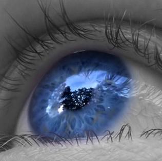 Olho humano, um instrumento óptico