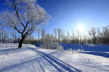 Inverno. A estação do inverno e suas características - Mundo Educação