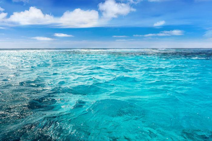 Apesar de serem grandes extensões de água salgada, mar e oceano não são sinônimos.
