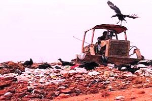 O chorume oriundo de lixões é capaz de poluir, significantemente ar, água e solo.