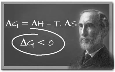 O cientista americano Gibbs e sua fórmula da Energia Livre para o cálculo da espontaneidade de uma reação.