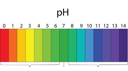 A solução-tampão também pode ter o seu pH calculado como qualquer solução