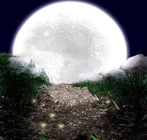 Visão noturna da Lua.