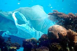 Sacolas de supermercado correspondem a 27% do lixo plástico encontrado nos oceanos