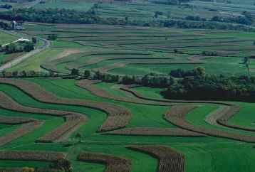 Agricultura intensiva.