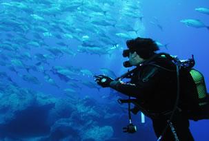 Qual a química dos oceanos?