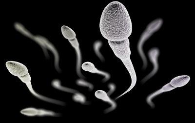 Os espermatozoides são os gametas masculinos do homem