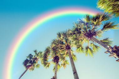 A óptica estuda fenômenos relacionados à luz, como os arcos-íris
