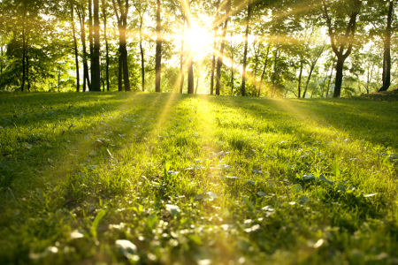 O bem-estar do meio ambiente depende da Química Ambiental e da ação das pessoas