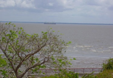 O maior rio do mundo está no Brasil, o Amazonas.