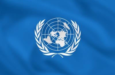 Organização das Nações Unidas, uma das mais importantes organizações internacionais