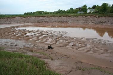 O uso inadequado e ininterrupto do solo pode causar impactos ao meio ambiente como erosão e assoreamento dos rios