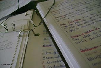 Caderno ou Fichário?