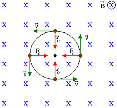 Para uma carga lançada perpendicularmente às linhas de campo, a força magnética atua como a força centrípeta