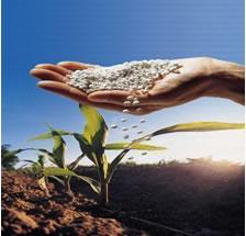 Fertilizantes químicos e poluição