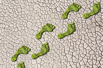 Suas atitudes ambientais hoje ditam o futuro do planeta