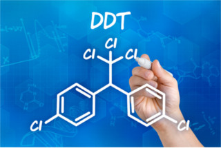 O DDT é um haleto orgânico cujo nome oficial é bastante complexo (1,1,1-tricloro-2,2-di (p-clorofenil))