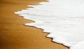 A espuma do mar: materiais orgânicos presentes.