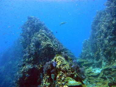 Nas áreas de dorsais oceânicas, é comum a formação de cadeias de montanhas no fundo do oceano